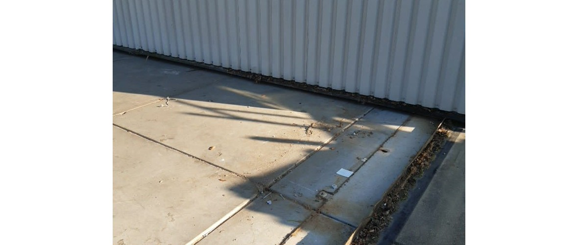 Let's move it 2019-10-29 at 10.14.42.jpeg