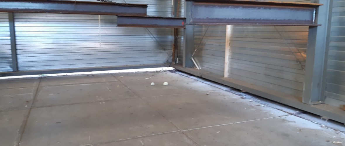 Let's move it 2019-10-29 at 10.14.50 (1).jpeg